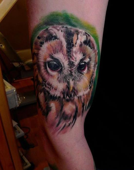 arm colorful owl tattoo