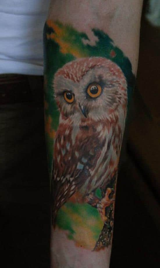 owl tattoo on green background