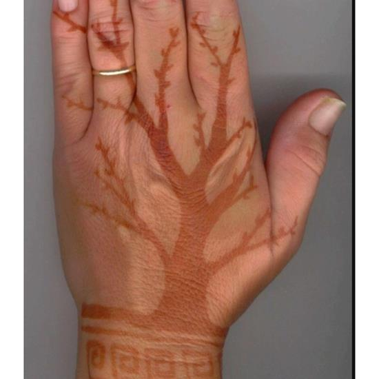 henna-tattoos-33