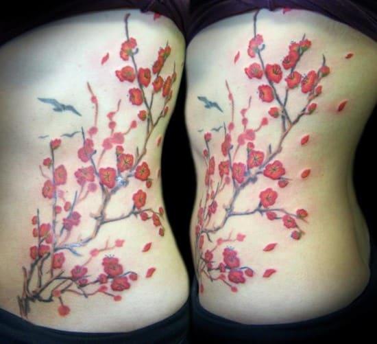 1-cherry-blossom-branch600_5471