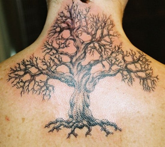 100 Best Tree Tattoo Designs Meanings 2016 Collection