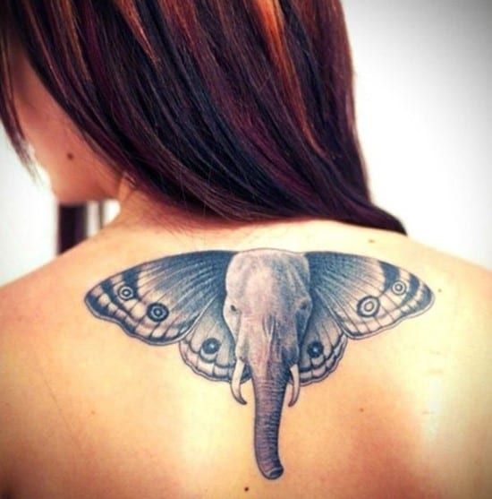 17-Butterfly-elephant-tattoo