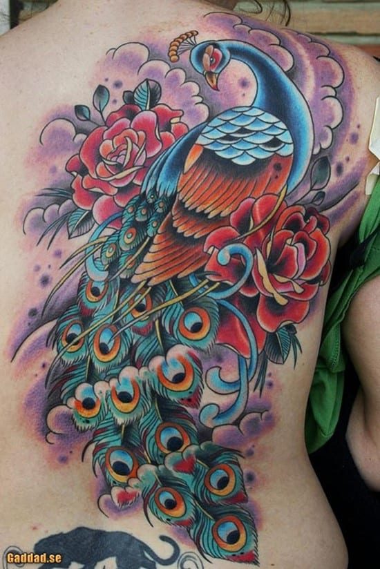 21-Peacock-Tattoo