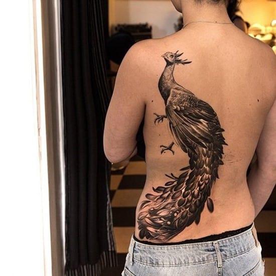 24-Peacock-Tattoo