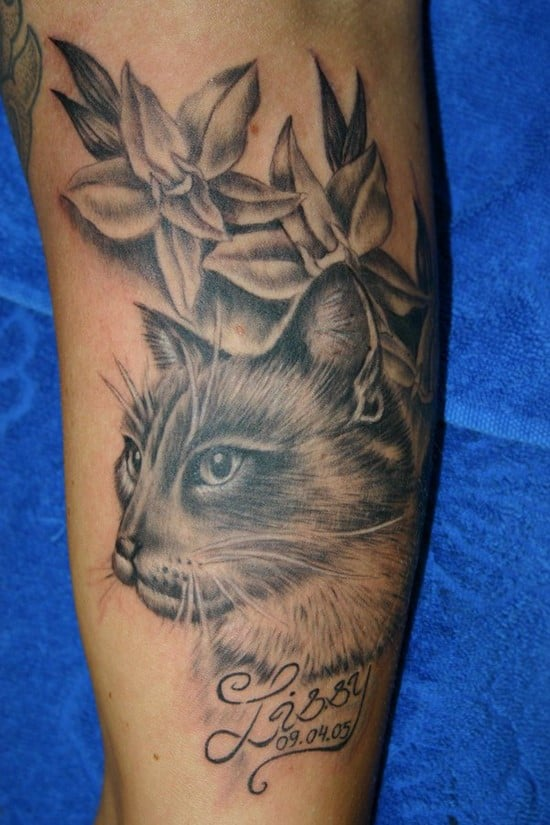 28-kitty-cat