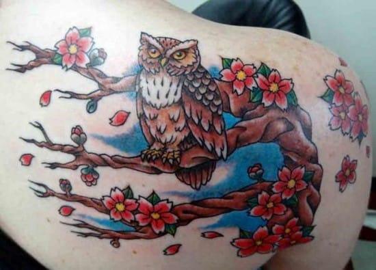 4-owl-on-cherry-tree600_4311