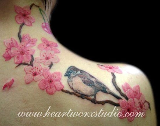 8-sparrow-and-cherry-blossoms_594_4671