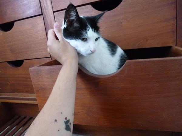 AD-Minimalistic-Cat-Tattoos-97