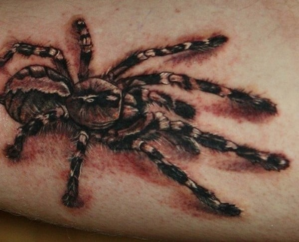 Wild-spider-Tattoo-520x421