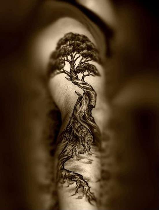 beautiful-tree-tattoo