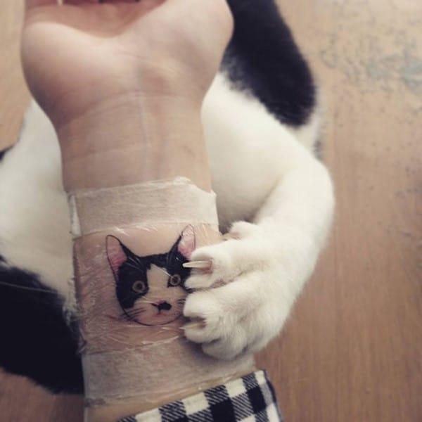 cat-tattoo-illegal-outlaw-tattoo-artists-south-korea-11