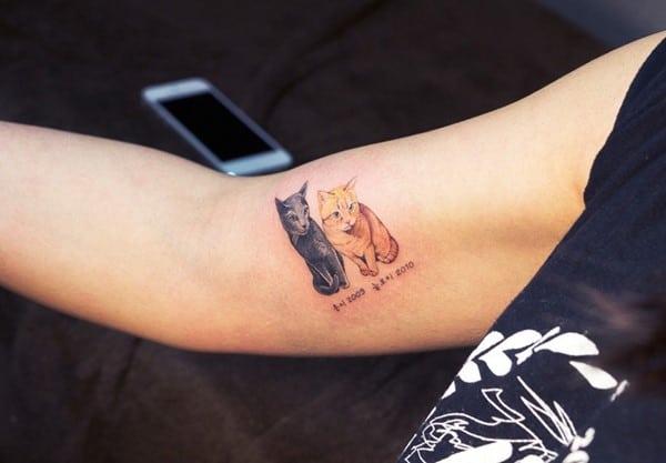 cat-tattoo-illegal-outlaw-tattoo-artists-south-korea-9