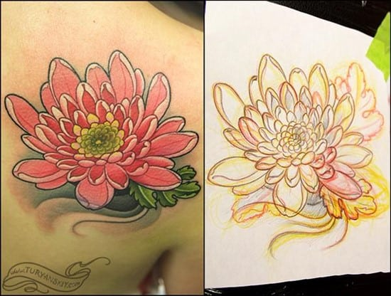 chrysanthemum_oleg