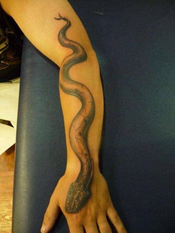 Наколки змея на предплечье