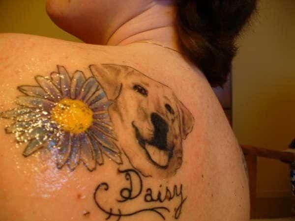 daisy-with-dog