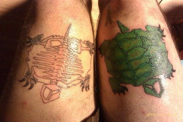 turtle-n-turtle-skeleton
