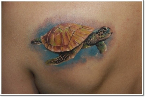 turtle-tattoos-designs