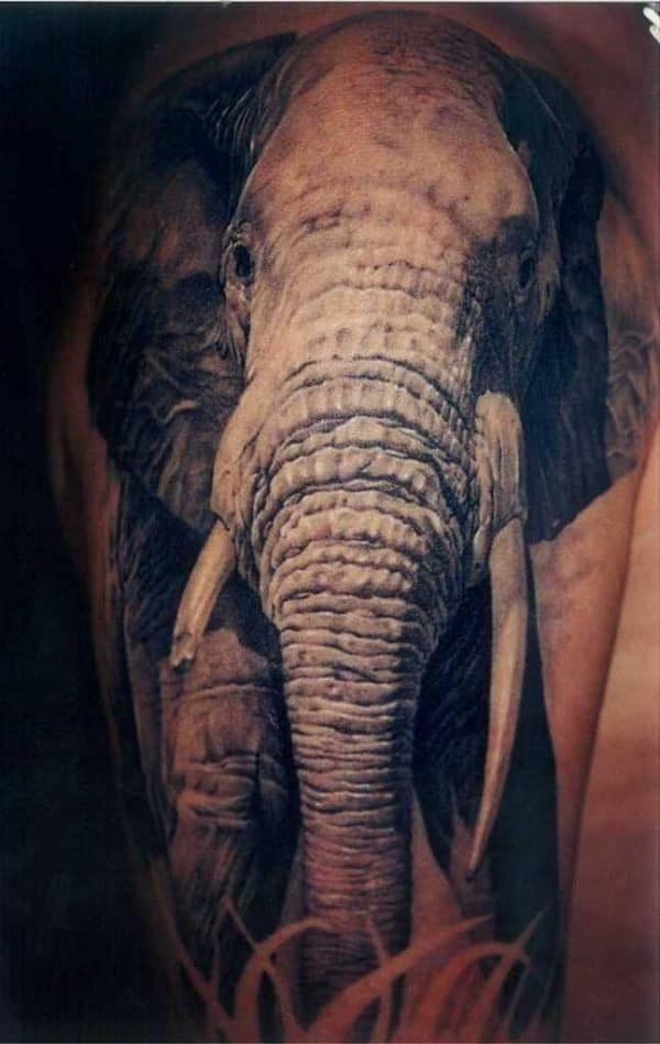 Cute And Impressive Elephant Tattoos