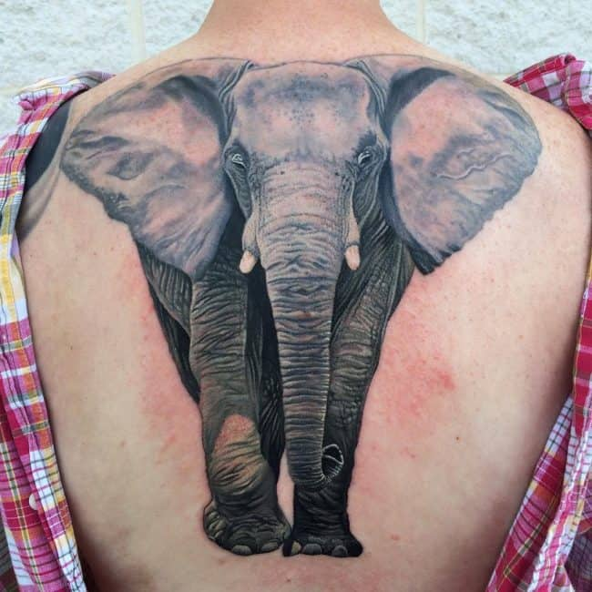 elephant tattoo16