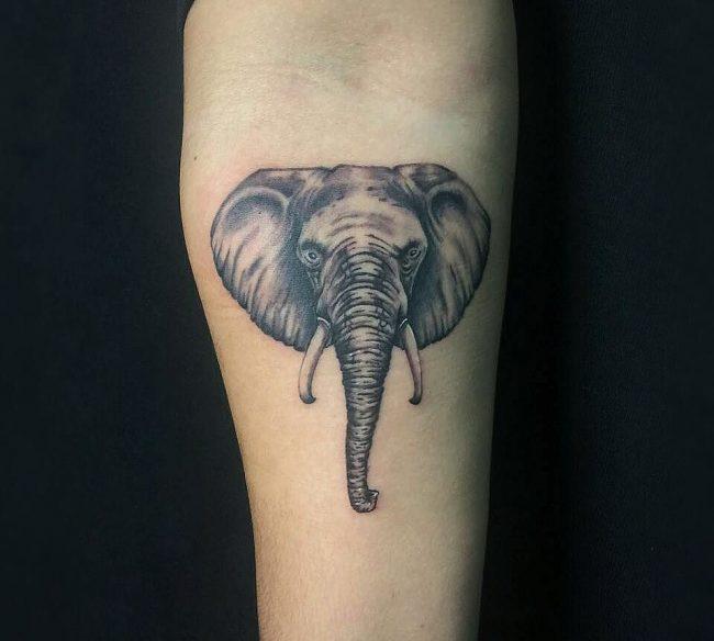elephant tattoo84