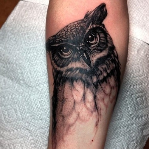 Half Body of Owl on Arm Tattoo