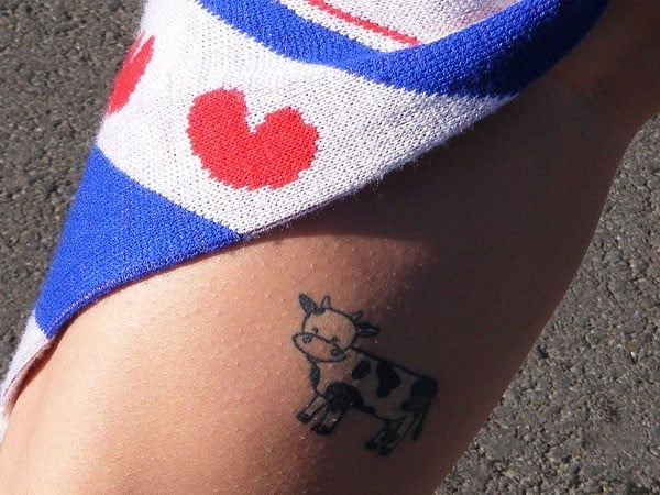 cow-on-my-calf