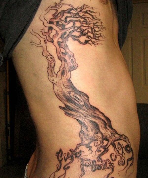 sleeve-family-tree