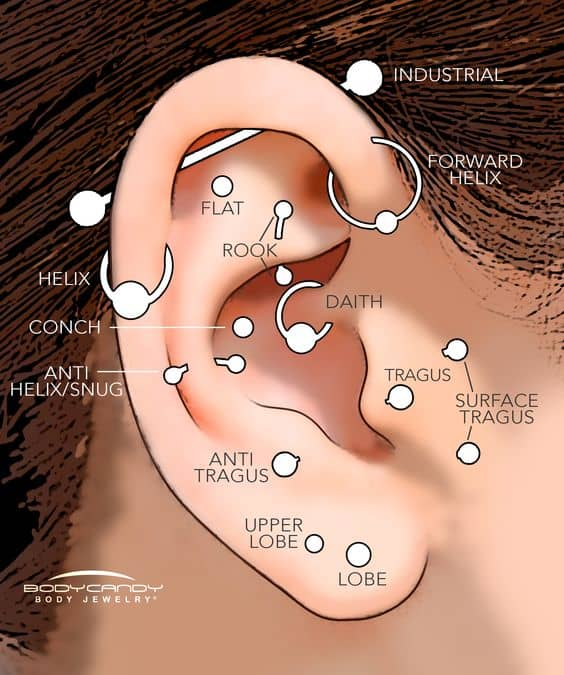 Ear Piercing Types