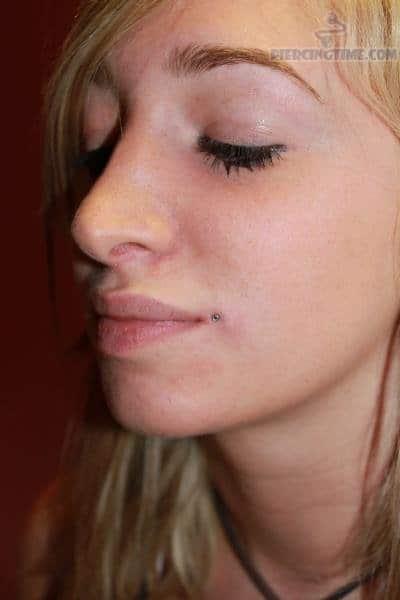 Simple Dahlia Bites Piercing