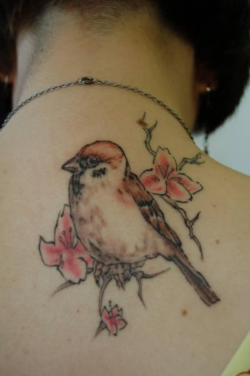 sparrow back tattoo